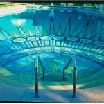 Zodiac Pool